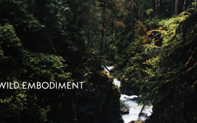 Podcast #61 What Wild Embodiment means to me